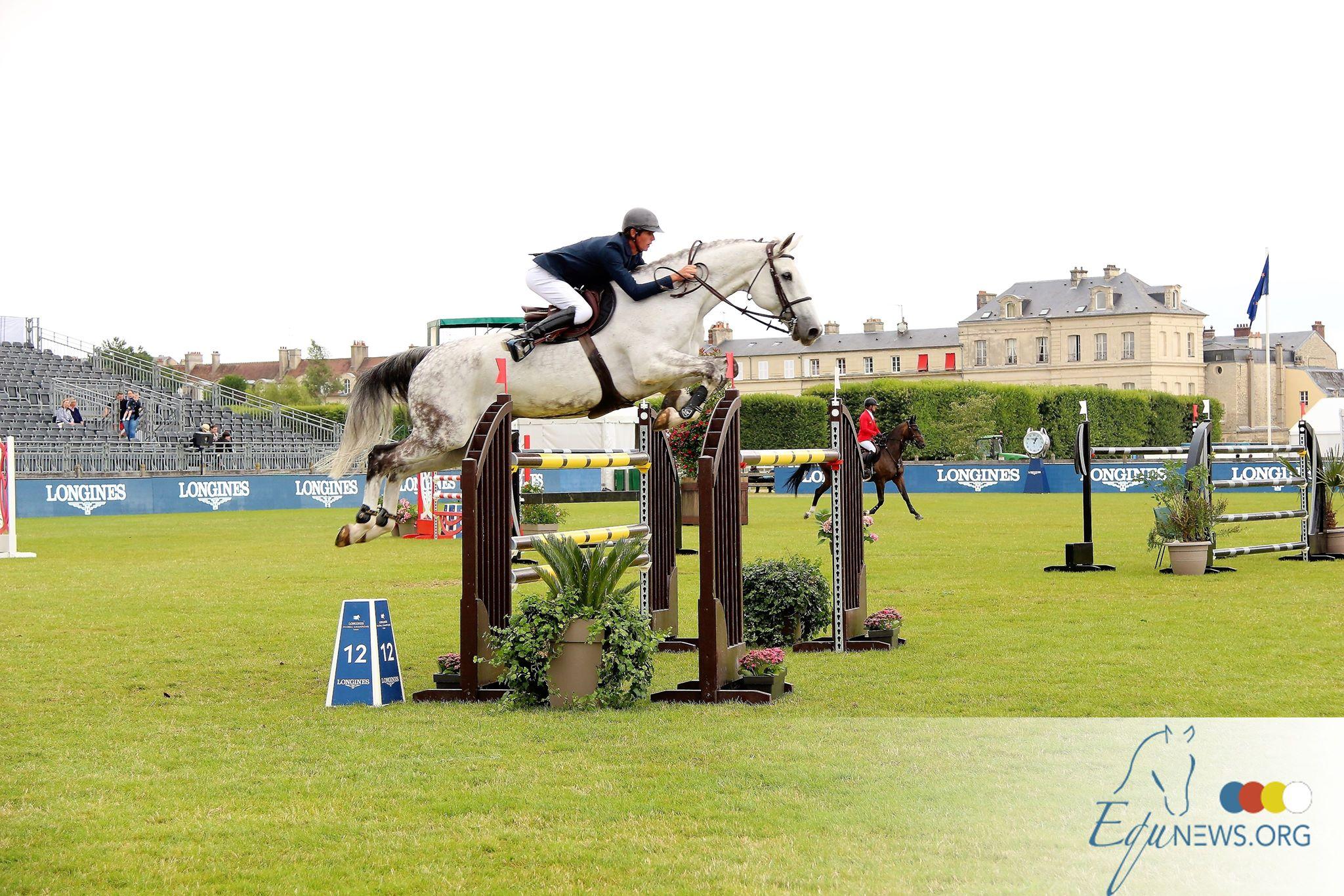 Les chevaux belges et français de saut d'obstacles FIT TO compete à Rotterdam