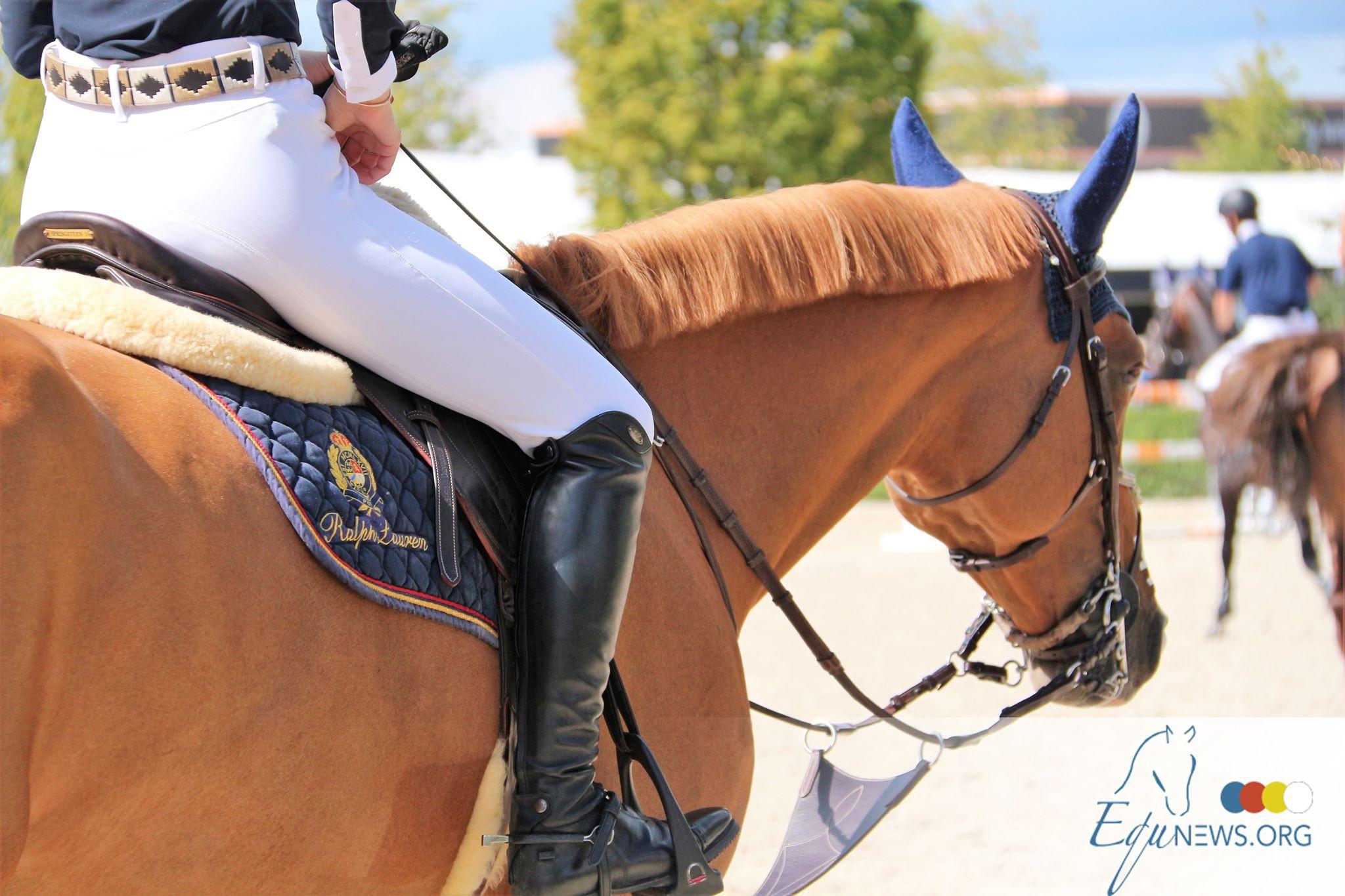 Nabab de Reve fournit le champion des 7 ans à Fontainebleau