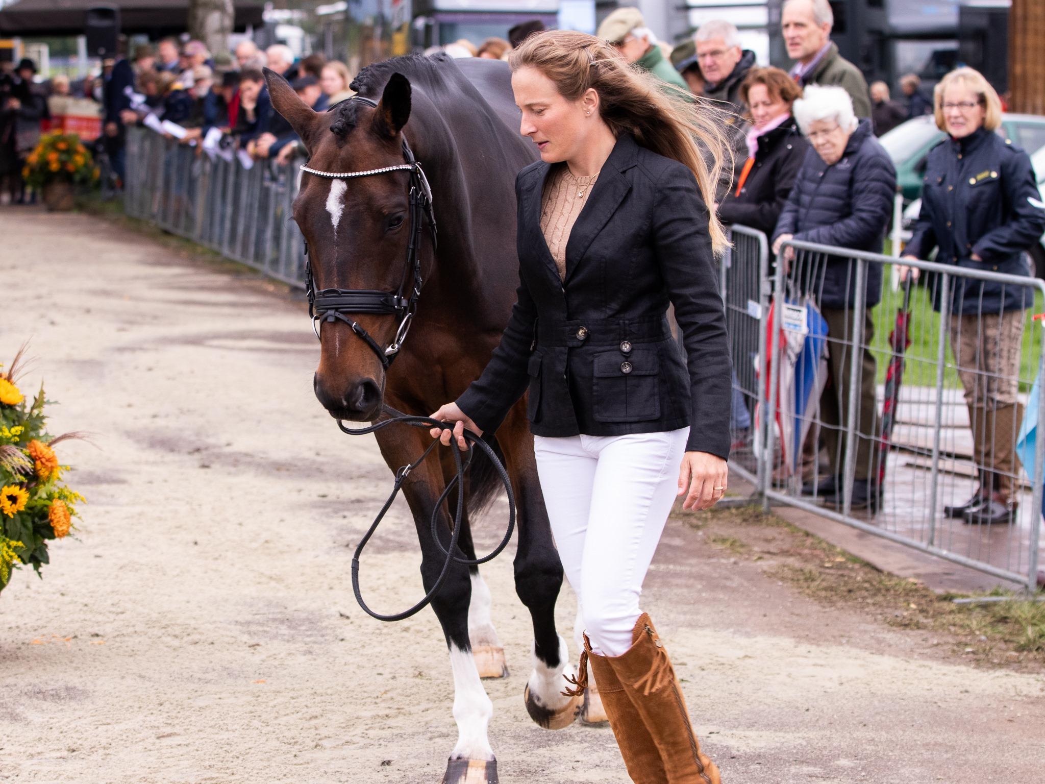 """Les chevaux belges prêts à concourir à Boekelo : """" En route pour Tokyo ? """""""