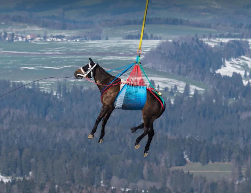 Entraînement spectaculaire de l'armée Suisse dans les Franches-Montagnes
