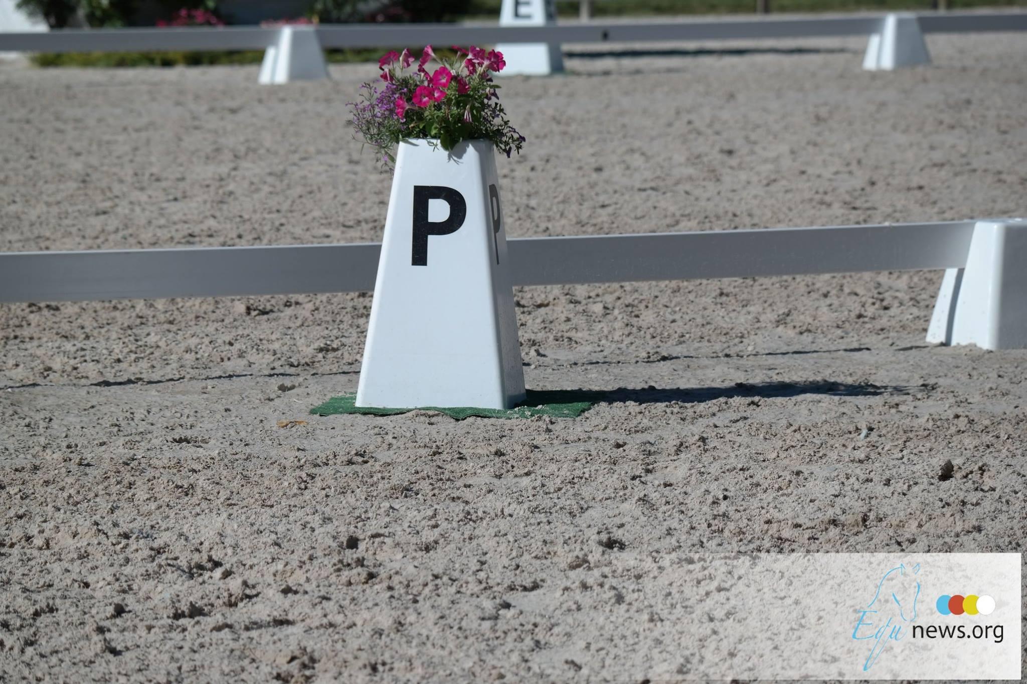 Jeux olympiques de Tokyo : le cheval d'Isabelle Pinto retiré de la compétition