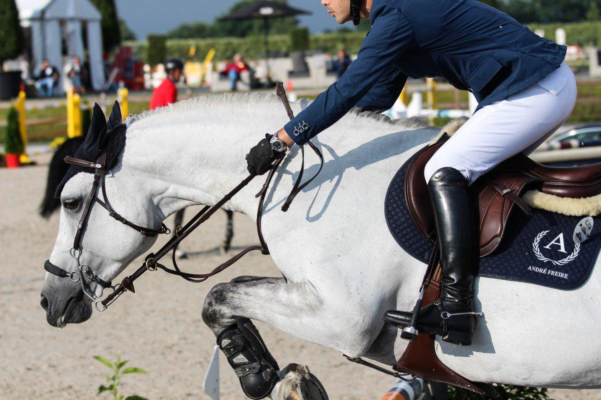 Nederlandse paarden domineren in Coapexpan
