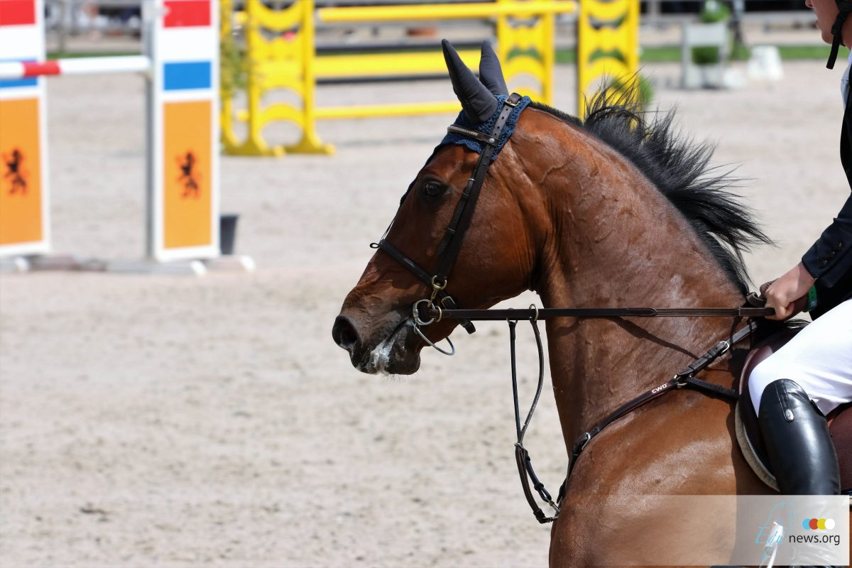 Gerrit Veenstra naar winst op Indoor Drachten