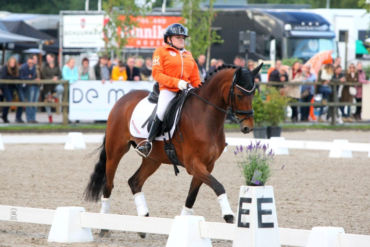 Para-amazone Demi Vermeulen verwelkomt nieuw paard in haar stallen