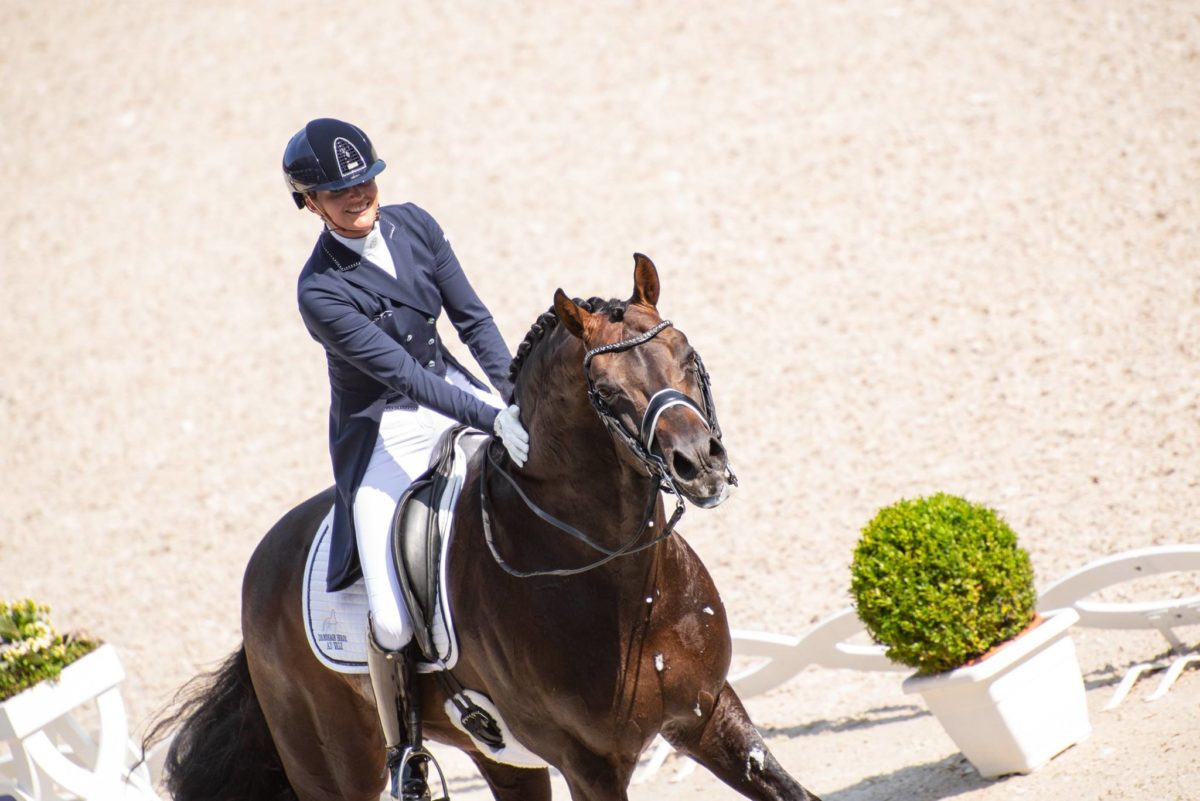 This is the FEI Horse of the Month