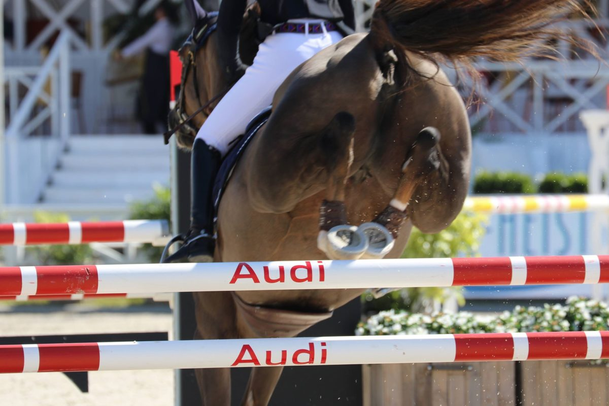 Spanish win for Gonzalo Anon Suarez and Elisa van de Helle (Castelino vd Helle) in CSI4* of Saint-Tropez