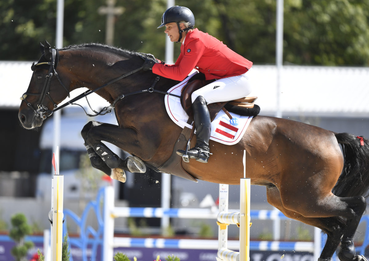 16-year old Sterrehof's Cayetano Z retires from the sport