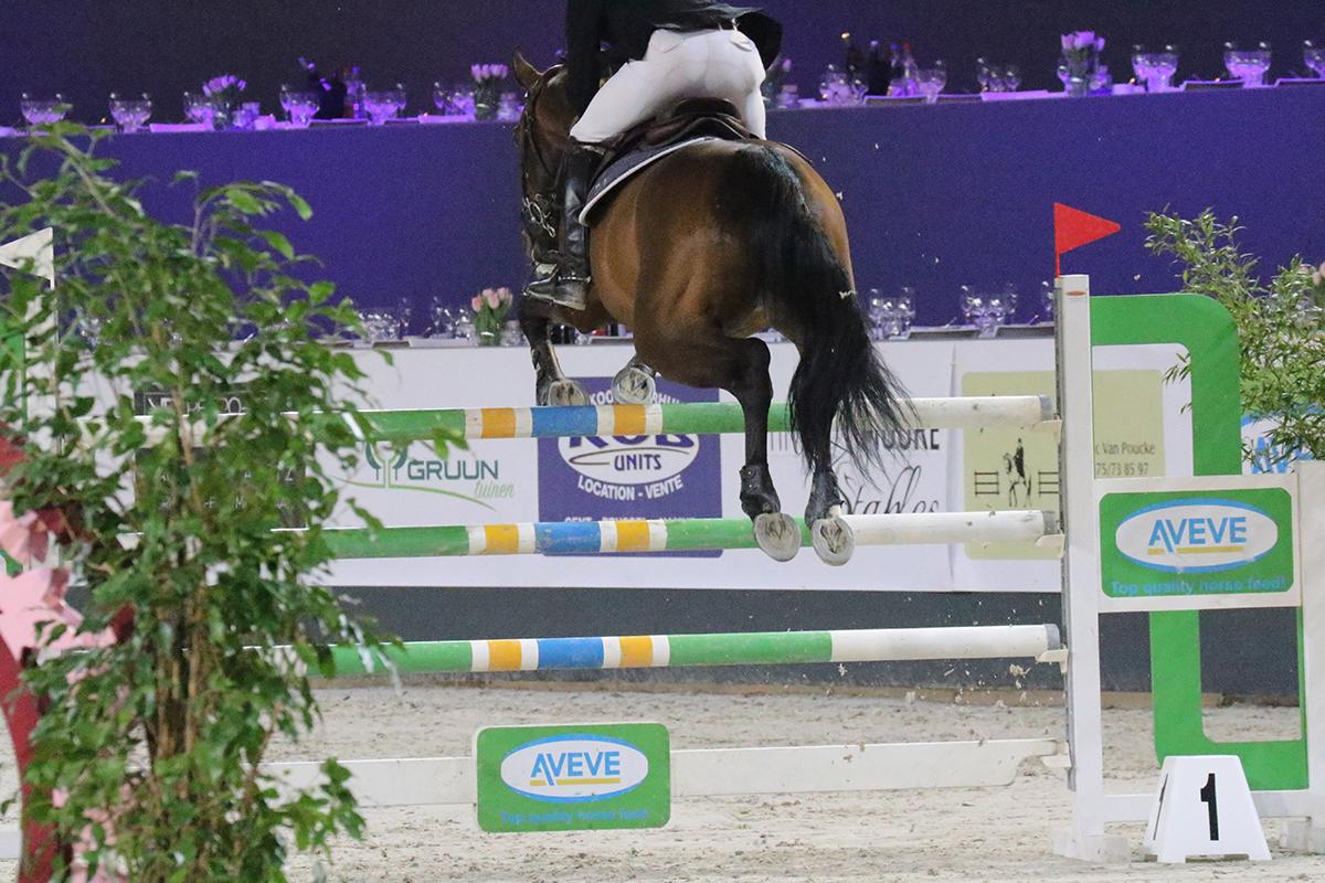 Marcelle Hokse wint  Grote Prijs van Paard Balkbrug